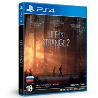 Игра Life is Strange 2 Collectors Edition (PS4, русская версия)